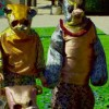 "Panda Bear, ""Tropic of Cancer"" Video"